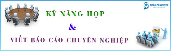 ky nang hop va viet bao cao chuyen nghiep  588x175